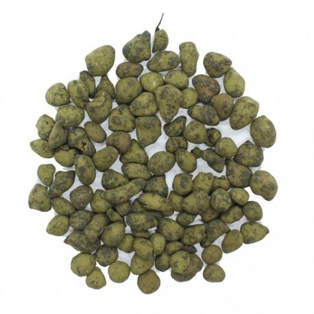 Thé vert des Açores Vrac 100g